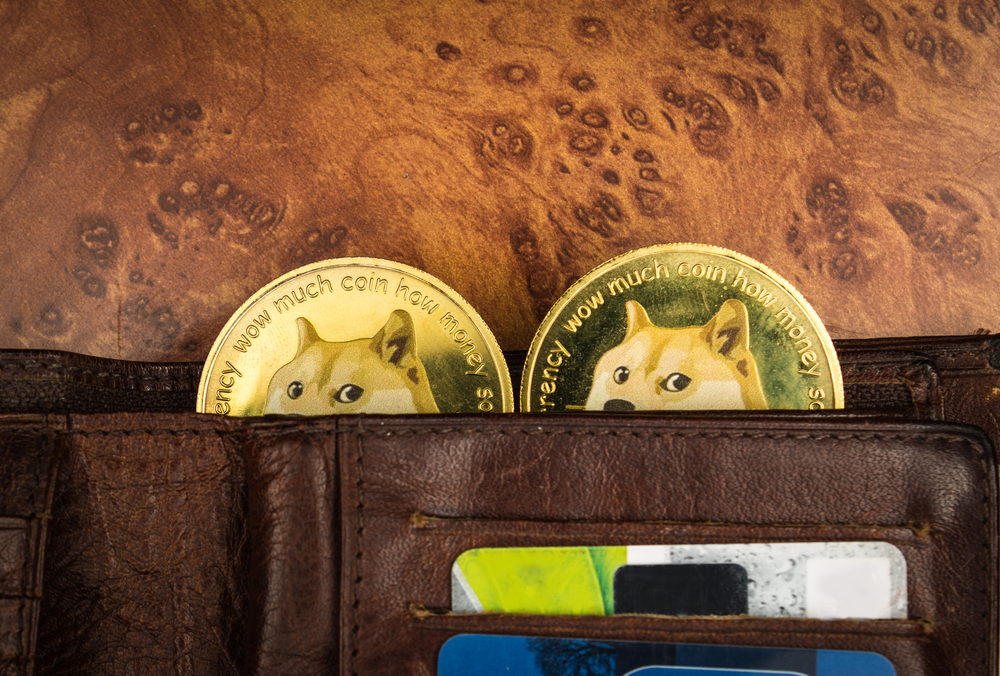 Elon Musk Says DOGE Is A Hustle Causing Price Of Dogecoin To Plummet By 30%