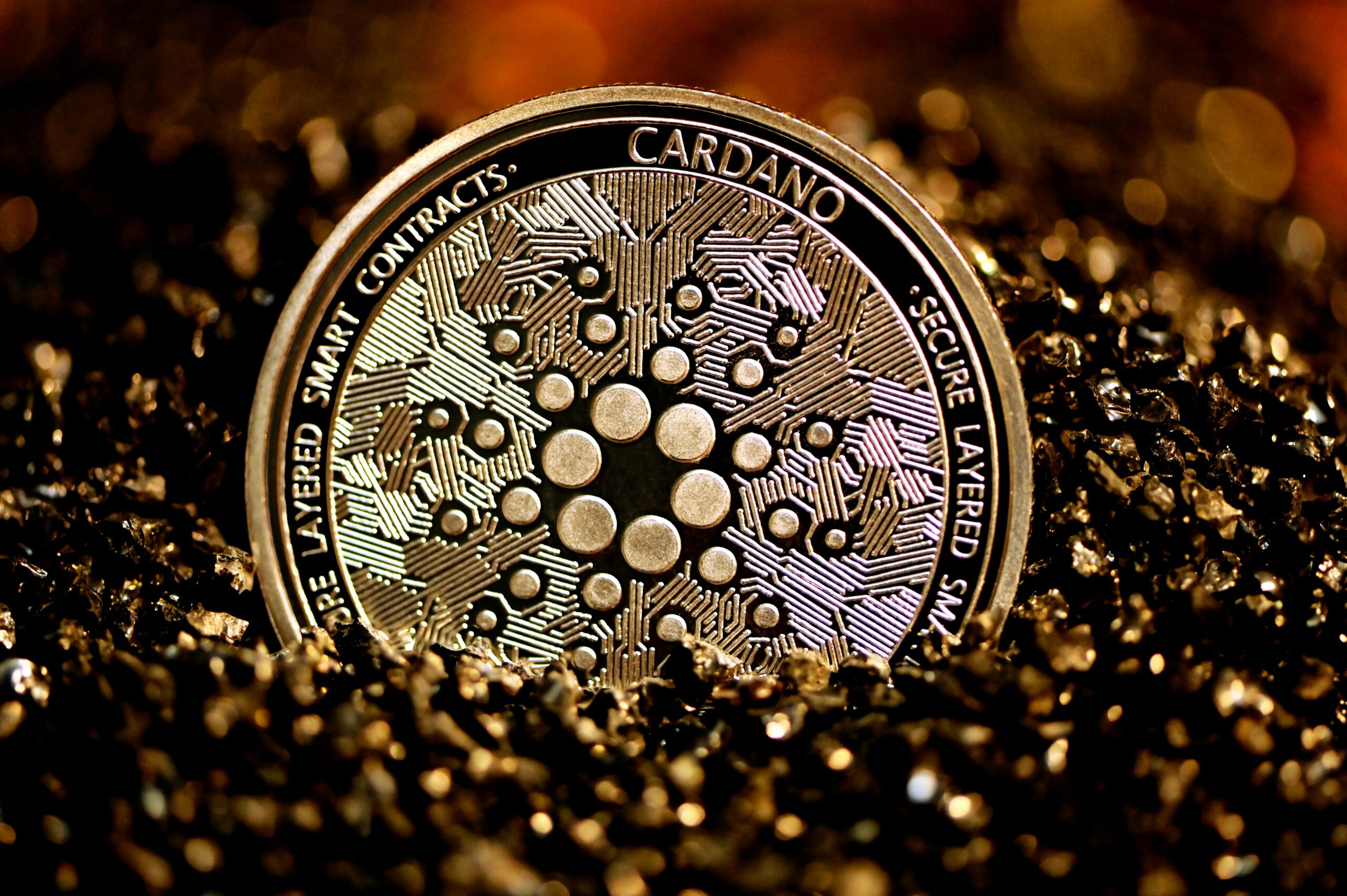 Charles Hoskinson Explains Why Tesla CEO Should Pick Cardano Instead Of Bitcoin